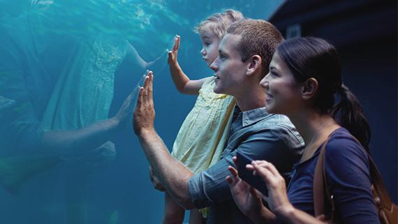 Dallas Aquarium in Texas